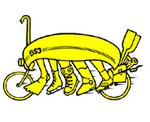 BSJ_Logo